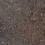 Jeffries Special Soil