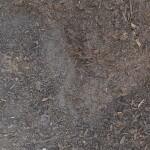 Jeffries Veggie & Garden Soil